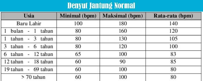 Denyut Jantung Normal
