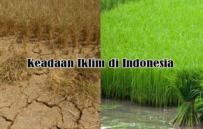 Keadaan Iklim di Indonesia